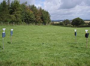 Experimental site at Pontbren