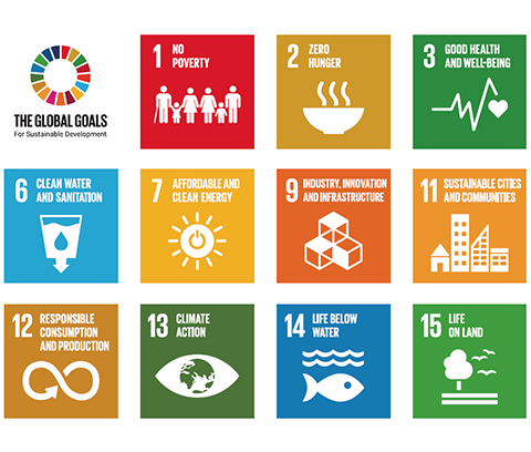 The 11 UN Sustainable Development Goals specifically mentioned in the UKCEH strategy