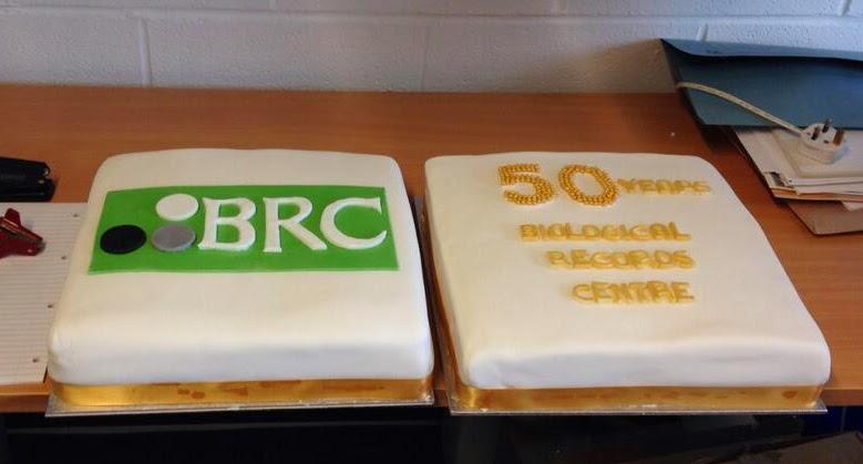 BRC cake