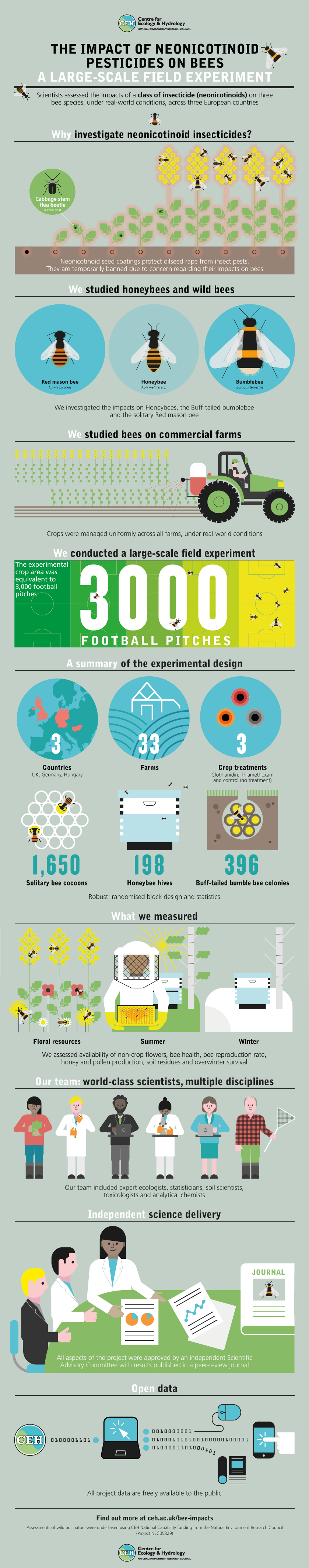 infographic large-scale field experiment impacts of neonicotinoids on bees