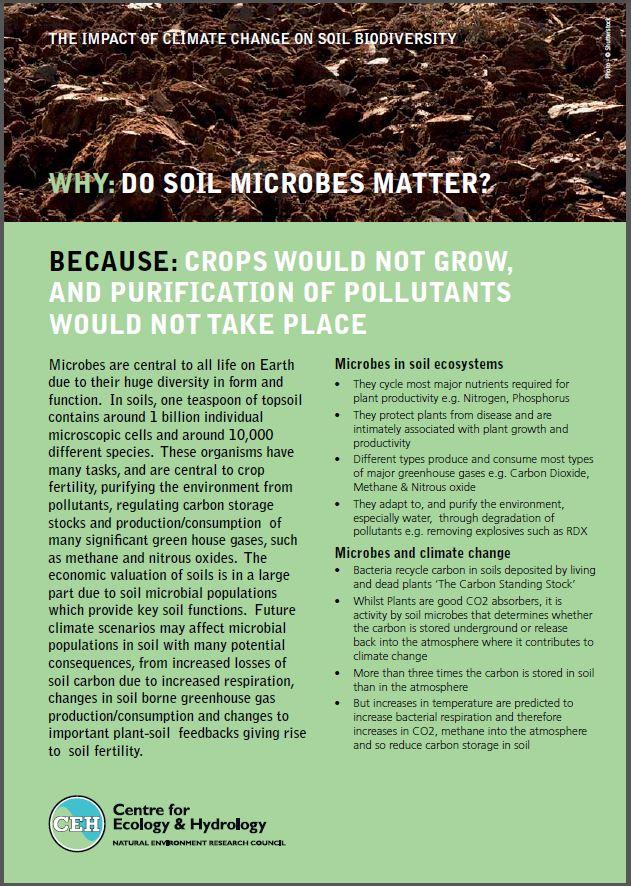 Soil microbes leaflet