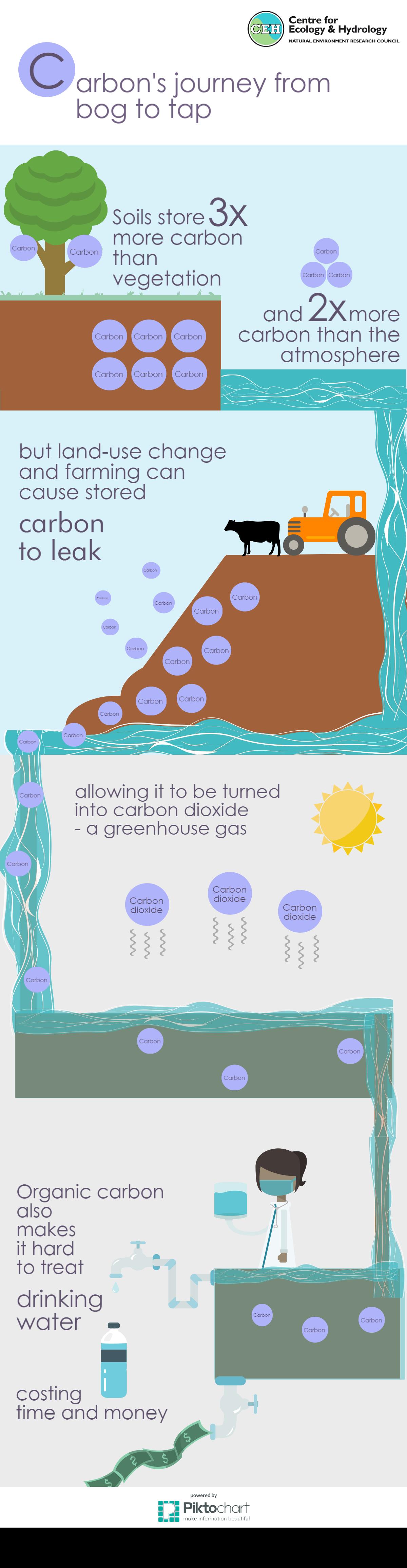 Chris Evans bog infographic