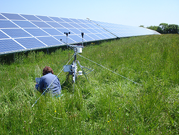 Scientist investigating effects of a solar farm on the local environment