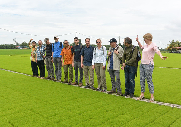 UK and Crops for the Future colleagues on an agricultural field tour in Kuala Selangor