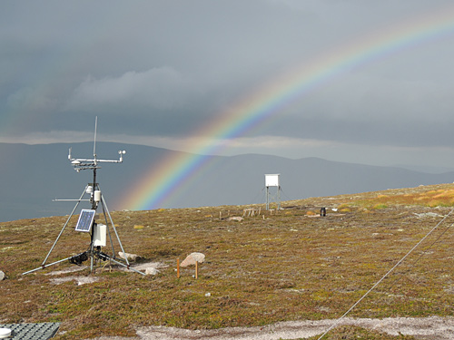 Terrestrial monitoring activity at the ECN upland site at Cairngorm (c) Chris Andrews