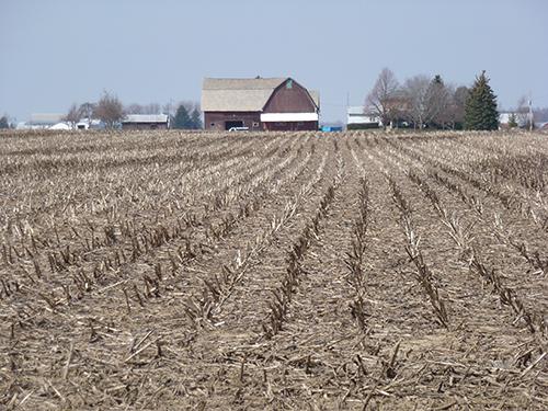 Farmland near the Lake Erie catchment
