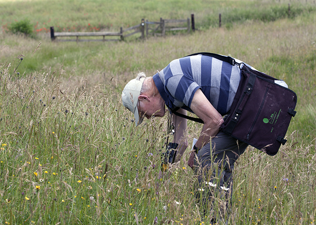 Mark Hill engaged in biological recording in the field