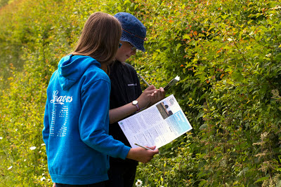 Younger visitors were enthusiastic contributors to the pollinator survey at Waddesdon. Photo: Heather Lowther