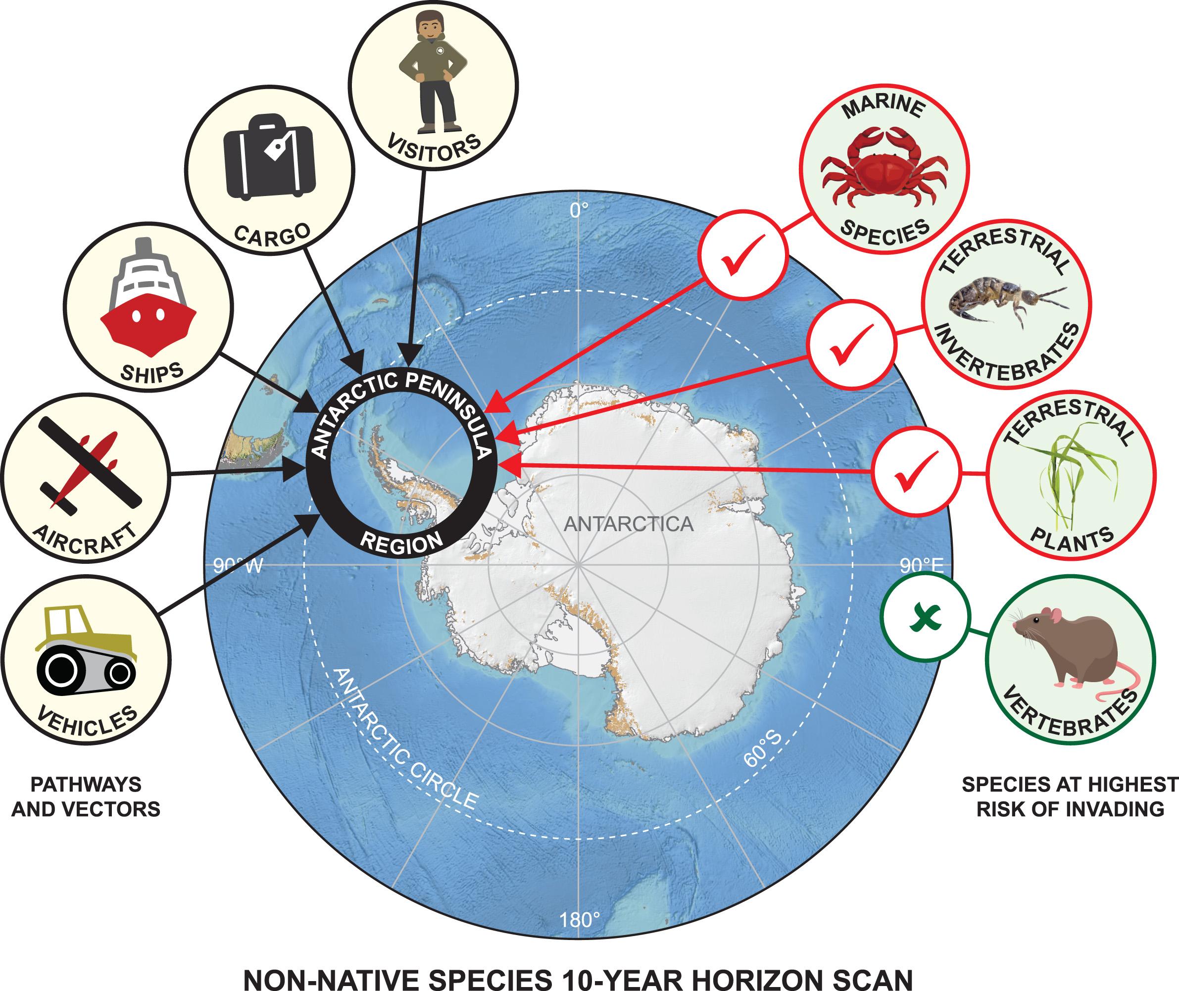 Invasive species posing threat to Antarctica