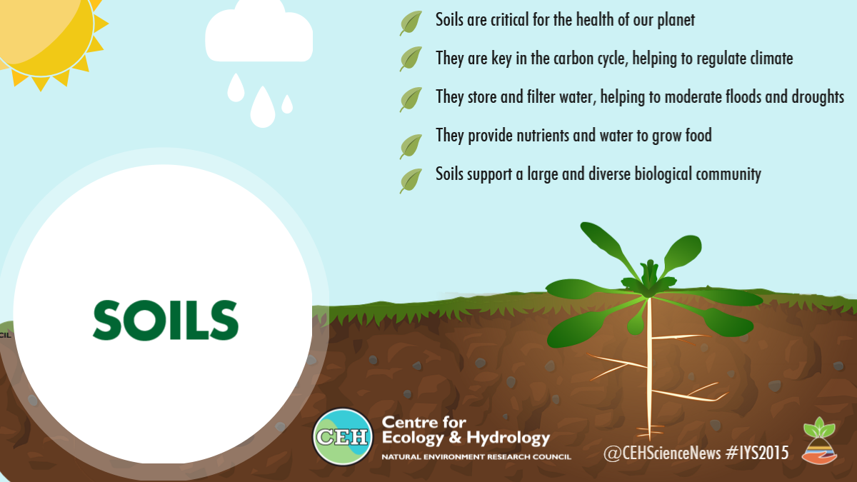 international year of soils 2015 ceh
