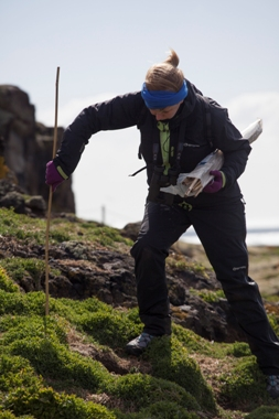Research collecting samples on the Isle of May