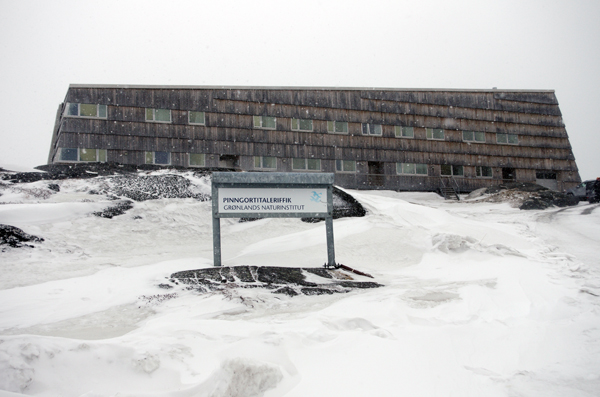 The Greenland Institute for Nature Research, hosts for the INTERACT meeting.  (Photo by Riku Paavola)