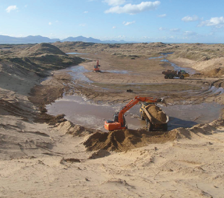 Kicking-starting natural dune dynamics