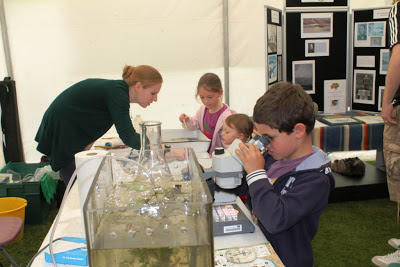 Local children were able to view insects from Loch Leven under the microscope. Photo: Laurence Carvalho