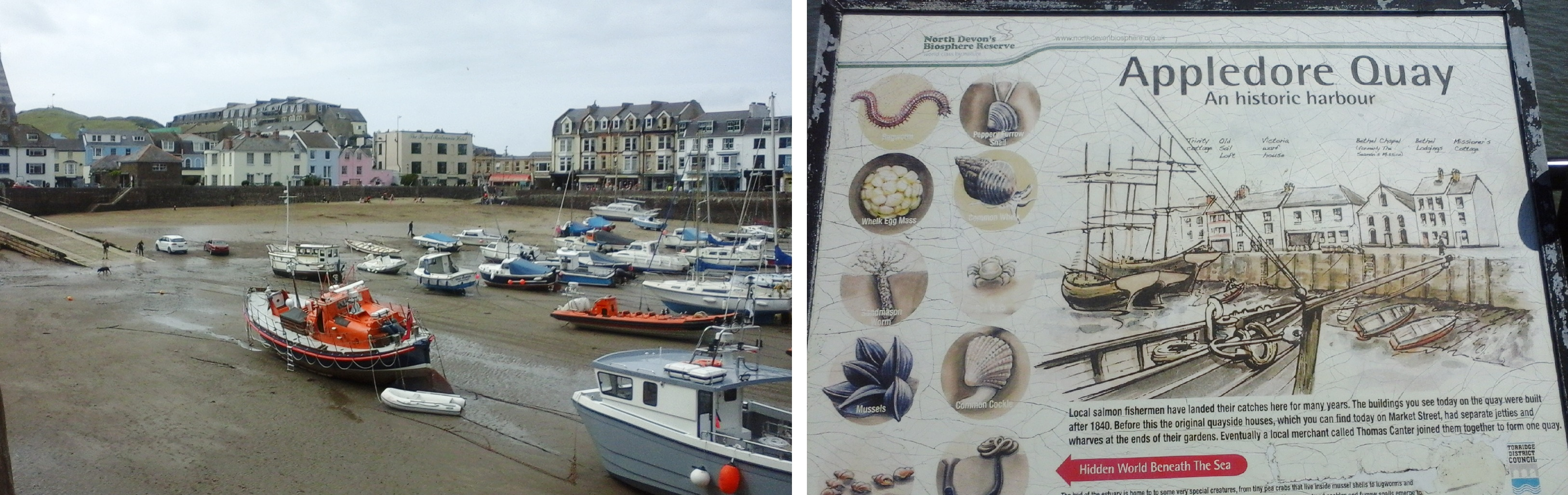 Ifracombe harbour, left, and cultural values of Appledore Quay
