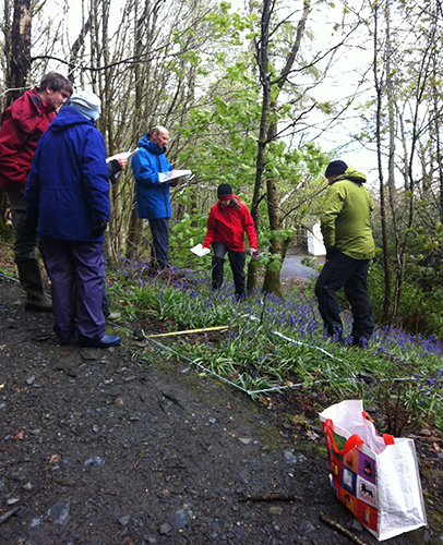 National Plant Monitoring Scheme surveyors in action
