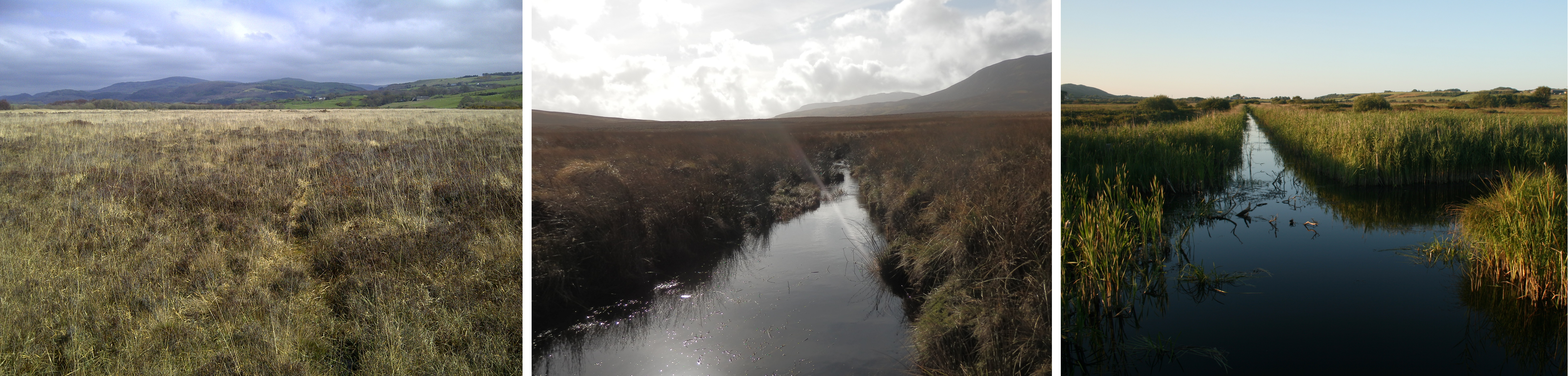 An intact raised bog, a recovering blanket bog and a conservation-managed fen