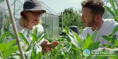 Professor Roy on Gardener's World
