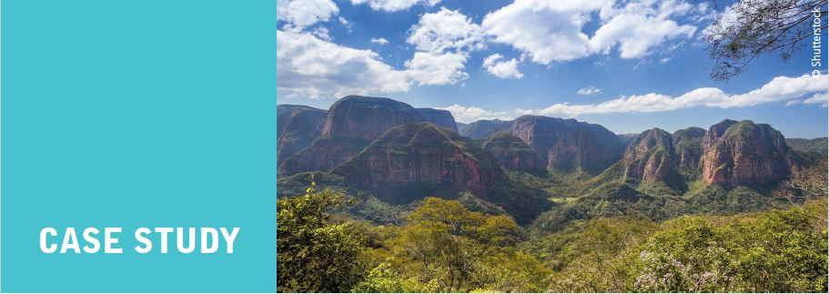 Mitigating climate change through biodiversity in South America