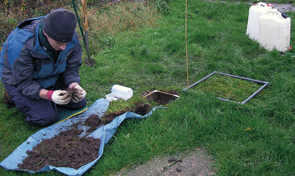 Dr David Robinson inspects his soil samples