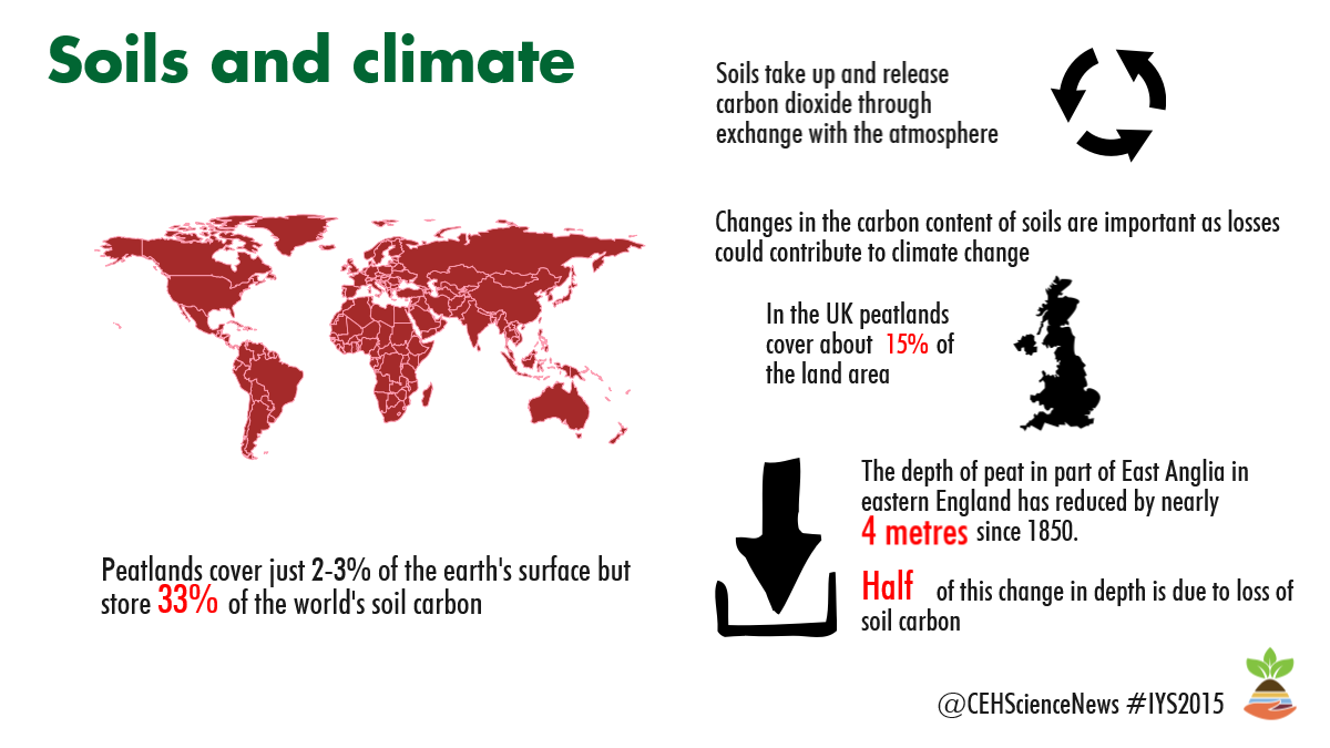 Soils and Climate Infographic for International Year of Soils
