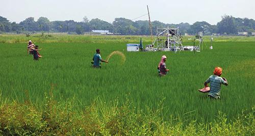 Spreading urea fertiliser on a field