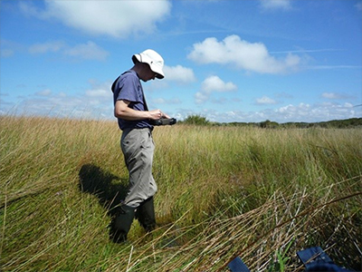 Surveying a dune slack at Birkdale on the Sefton Coast