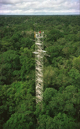 Flux tower in the Amazon rainforest