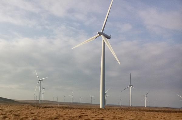 Windfarm with micro sensors below the turbines