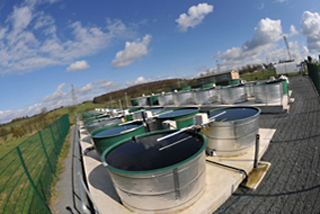 The experimental aquatic mesocosm facility at CEH