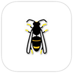 Asian Hornet Watch app logo