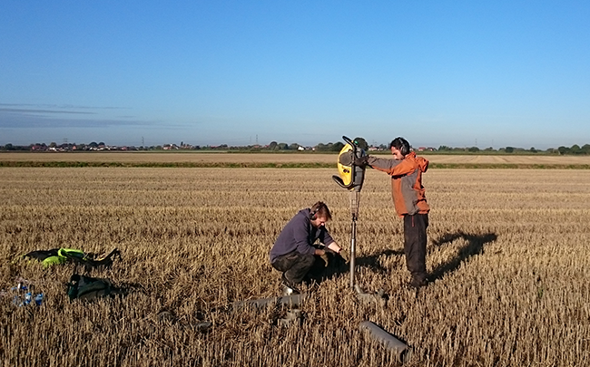 1m deep sampling to assess soil carbon stocks in bioenergy crops