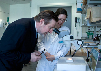 Barry Gardiner MP with Dr Claire Carvell of CEH during a  tour of CEH's Wallingford site. Photo: Heather Lowther/CEH
