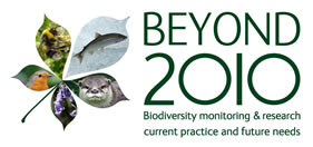 Beyond 2010 logo