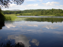 Blelham Tarn, one of the study sites