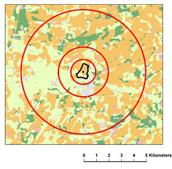 The butterfly transect is in black. The red circles show the range of scales at which the landscape was analysed.