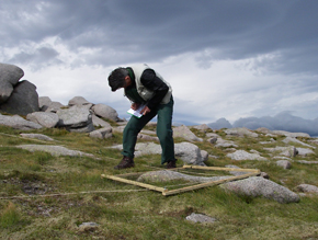Picture: Samples from the Cairngorms were analysed by CEH as part of the studyPicture: Samples from the Cairngorms were analysed by CEH as part of the study