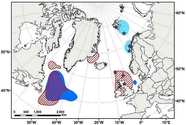 Core areas used by kittiwakes after breeding season, Bogdanova et al 2017
