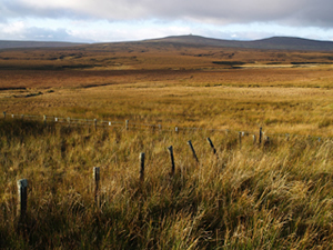 Cottage Hill Sike catchment, one of CEH's Carbon Catchments and part of Moor House ECN site