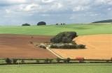 Countryside survey scene