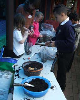 Pupils create their very own decomposer mesocosm, with a little help from Helen Hicks.