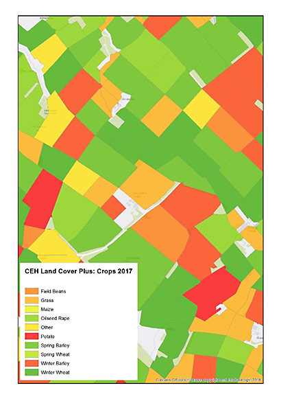 Map showing data from CEH Land Cover® Plus: Crops 2017