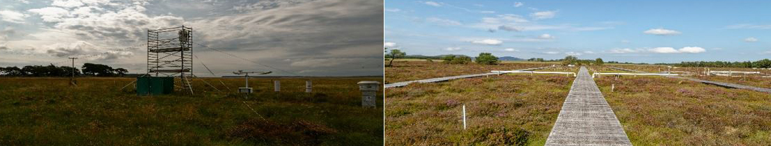 Whim Bog and Auchencorth Moss field sites