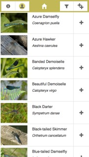 iRecord Dragonflies app screenshot