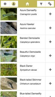 iRecord Dragonflies app screenshot