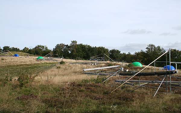 Climate change experimental site in Denmark
