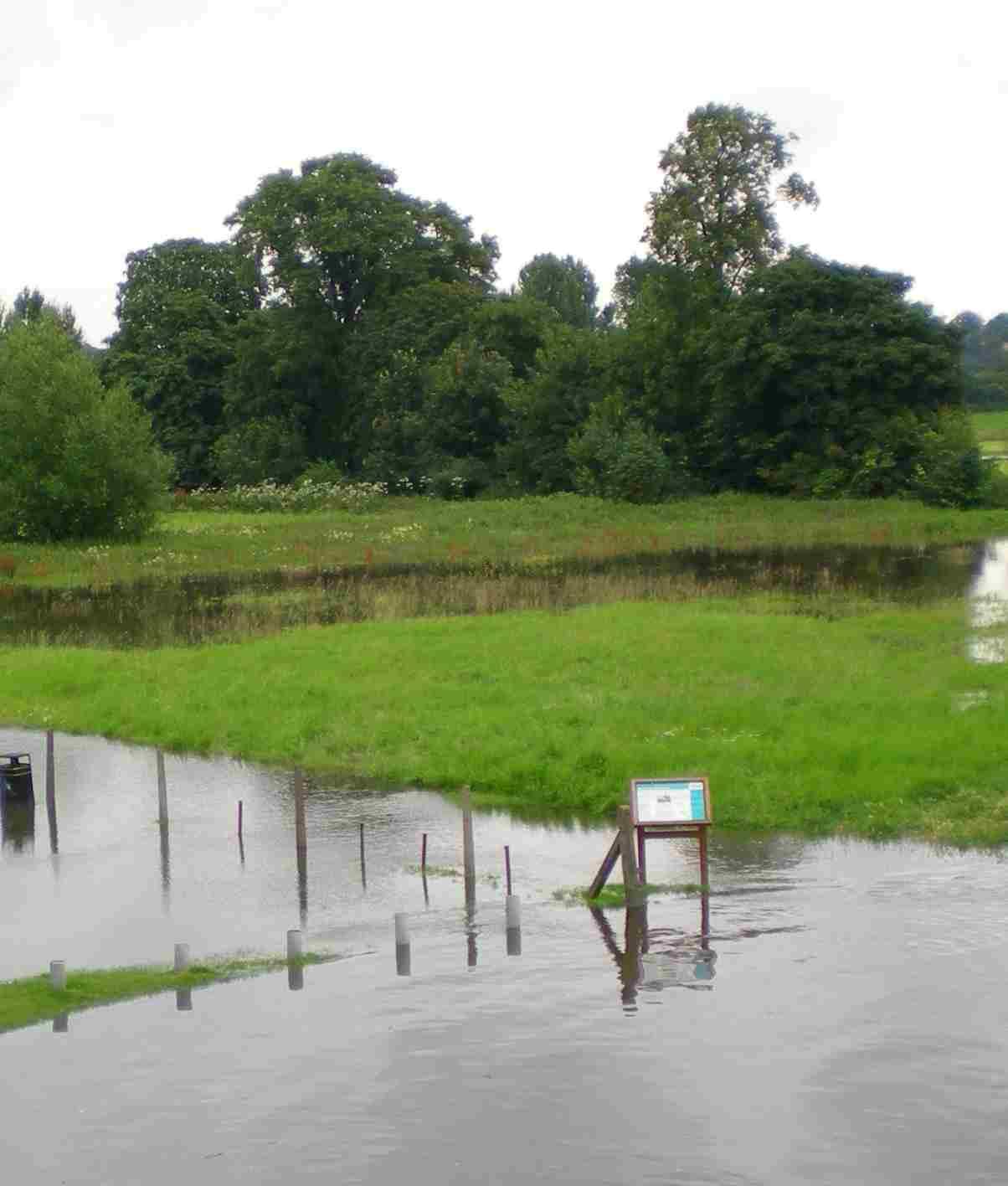 Lowland UK river
