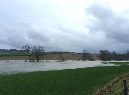 Floodplain inundation on river Eamont, tributary of river Eden