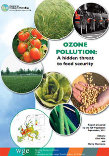 Cover of the Ozone Pollution report