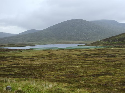 Wetlands, such as this blanket bog on the Isle of Harris, provide essential ecosystem functions and services, including regulation of water quality, sustainable control and mitigation of flooding, greenhouse gas reduction, essential habitats for plants an